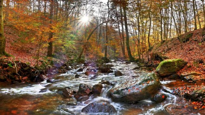 Wandern ist im Harz zu jeder Jahreszeit möglich. großes Schwimmbad