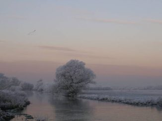 Winter in der Prignitz.